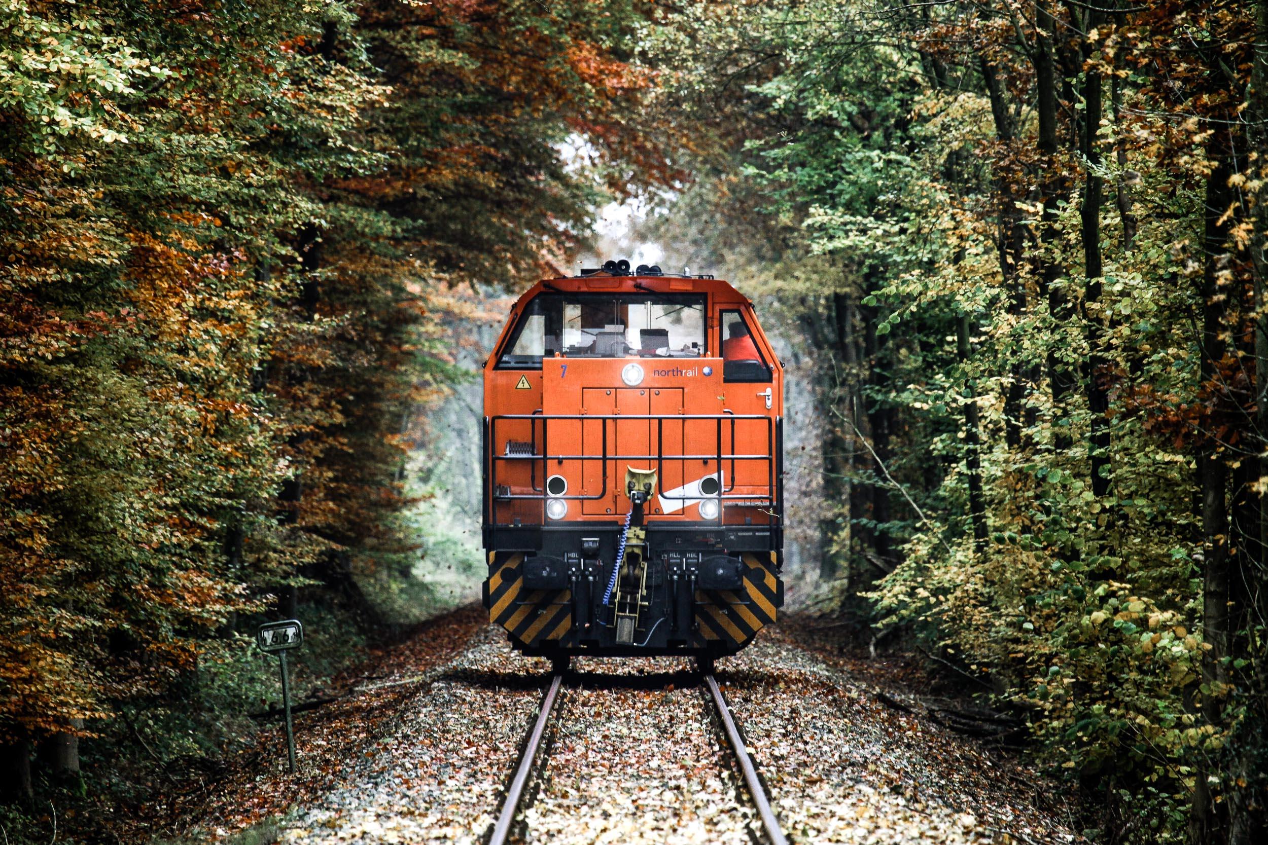 Paribus Rail Portfolio III - northrail-Lokomotive im Wald