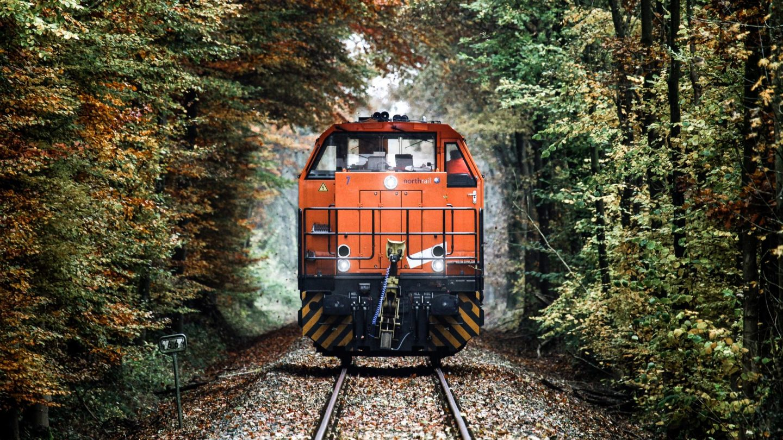 Northrail-Lokomotive im Wald